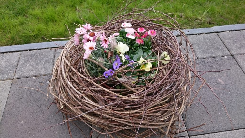 März: Nester